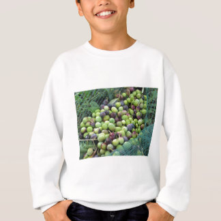 Just picked olives on the net during harvest time sweatshirt