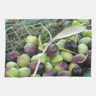 Just picked olives on the net during harvest time tea towel