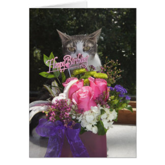 Just Popping in Cute Cat Birthday Card