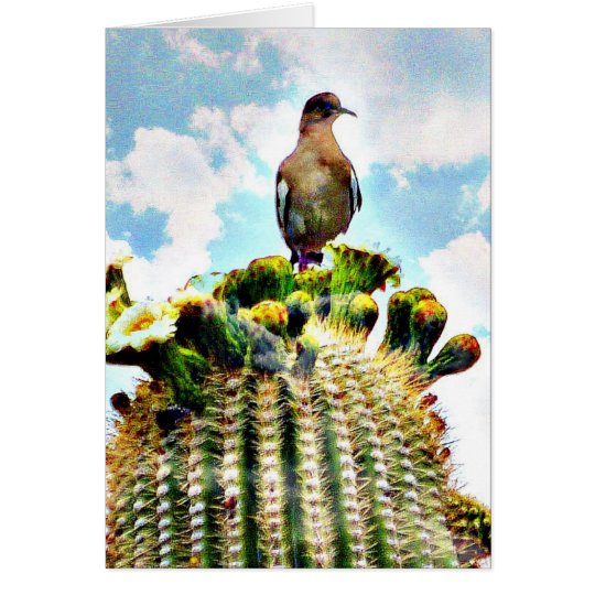 Just sitting' on a saguaro card