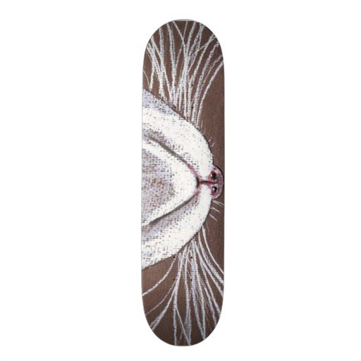 JUST THE CATS WHISKERS 2 SKATE BOARD DECKS