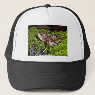 Juvenile copperhead, venomous snake, Georgia, Agki Trucker Hat