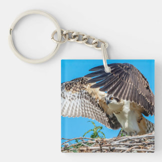Juvenile Osprey in the nest Key Ring