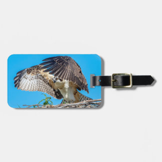 Juvenile Osprey in the nest Luggage Tag