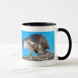 Juvenile Osprey in the nest Mug