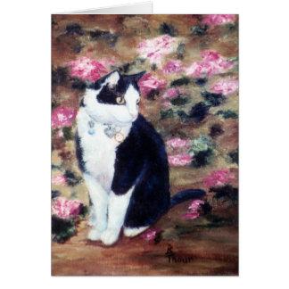 Kaboodles Cat Blank Card