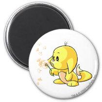 Kacheek Yellow magnets