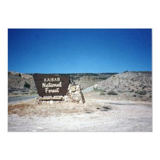 Kaibab National Forest Sign 13 Cm X 18 Cm Invitation Card