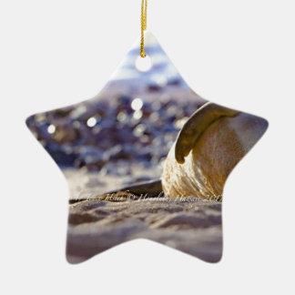 Kaimana Mug C310BECF-6742-4AB9-A670-07E3CFD639B5 Ceramic Ornament