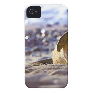 Kaimana Mug C310BECF-6742-4AB9-A670-07E3CFD639B5 iPhone 4 Cover