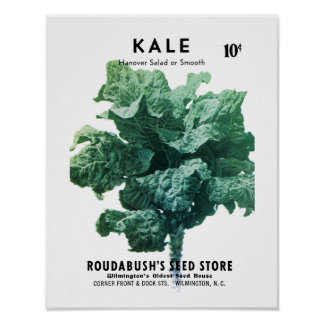 Kale Seed Packet Label Poster