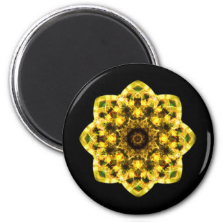 kaleidoscope abstract shape star eye iris science 6 cm round magnet