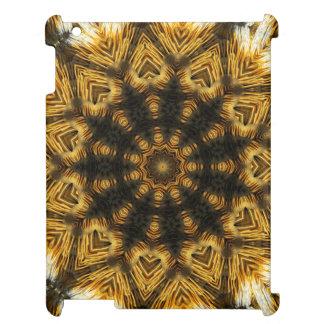 Kaleidoscope Mandala in Slovenia: Pattern 210.1 iPad Cover