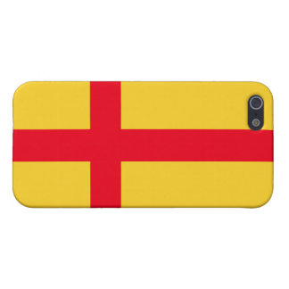 Kalmar Union flag iPhone 5/5S Case