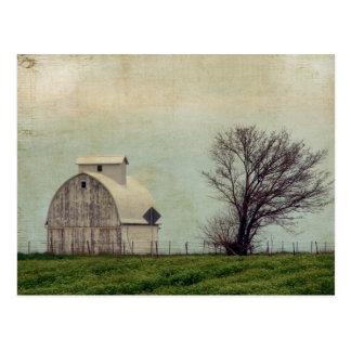 Kalona Iowa Fields and Barn With Tree Postcard