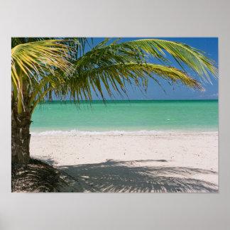 Kamalame Cay, Andros, Bahamas Poster