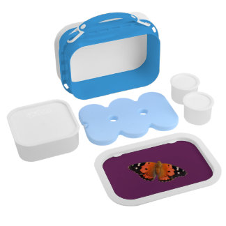 Kamehameha butterfly design lunch boxes