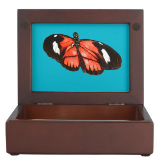 Kamehmeha butterfly design jewelry box memory boxes