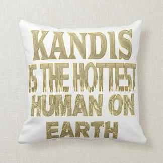 Kandis Pillow