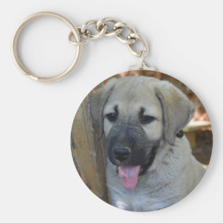 Kangal - Anatolian Sheep Dog Key Ring