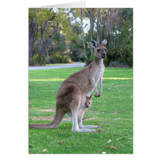 Kangaroo and Joey Greeting Card
