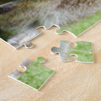 Kangaroo Art Puzzle