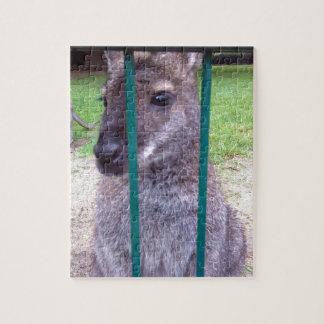 Kangaroo behind bars jigsaw puzzles