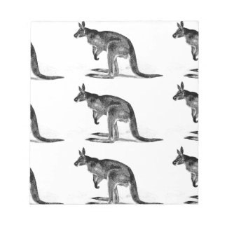 kangaroo boxed in square notepad