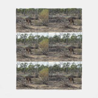 Kangaroo Down At  Billabong Med Fleece Blanket.