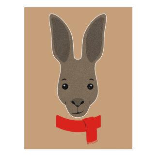 Kangaroo Face Postcard