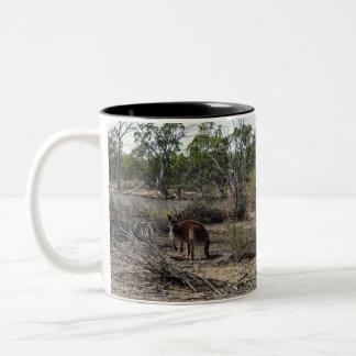 Kangaroo,_In_Outback_Australia_Two_Tone_Coffee_Mug Two-Tone Coffee Mug