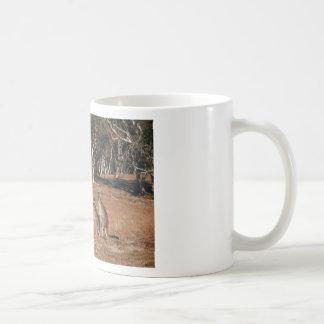Kangaroo Coffee Mugs