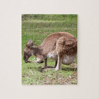 Kangaroo, Outback Australia Puzzles