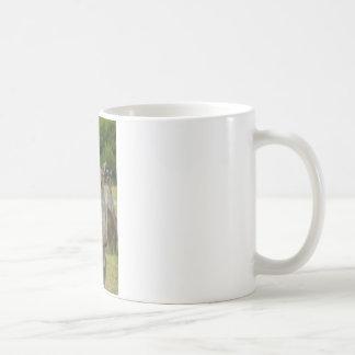 Kangaroo Paddock Basic White Mug