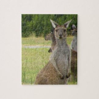 Kangaroo Paddock Jigsaw Puzzles