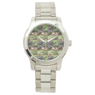 Kangaroo Photo Collage, Large Silver Unisex Watch