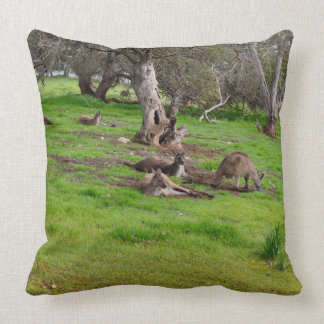 Kangaroo Siesta, Large Throw Cushion. Cushion