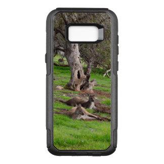 Kangaroo Siesta, Otterbox Samsung Galaxy S8+ Case