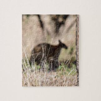 KANGAROO SILHOUETTE IN GRASS AUSTRALIA JIGSAW PUZZLES