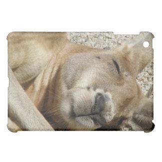 Kangaroo Sleeping Australia iPad Mini Covers