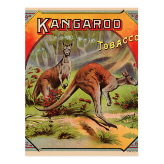 Kangaroo Tobacco Label Art Retro Vintage Kitsch Postcard
