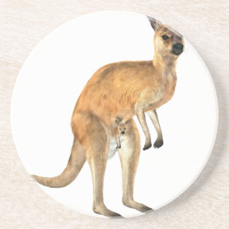 Kangaroo with Baby Joey Drink Coasters