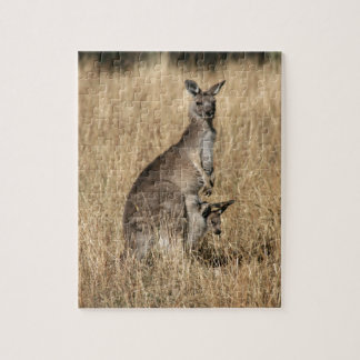 Kangaroo with Baby Joey in Pouch Jigsaw Puzzles