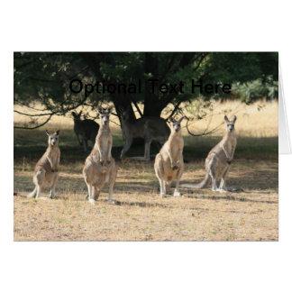 Kangaroos in a Row Card