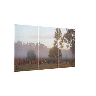 Kangaroos in the fog 3-panel canvas print