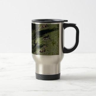 kangaroos coffee mugs