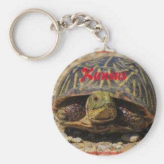 Kansas Box Shell Turtle Key Chain!! Key Ring