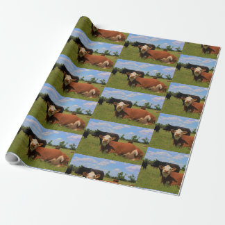 Kansas Country Cows Wrapping Paper