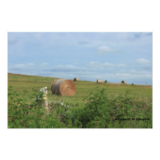 Kansas Country Hay Bales in a field Enlargement Photo Print