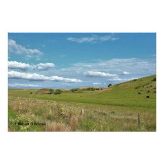 Kansas Country Pasture  Photo Enlargement